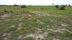 Land for sale Before La Campaign Tropicana Beach Resort Ibeju-Lekki Lagos