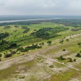 Mixed   Use Land Land for sale Palm spring estate lmedu ibeju lekki Eleko Ibeju-Lekki Lagos