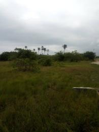 Residential Land Land for sale Silverpark Estate behind British Int'l School Awka South Anambra