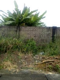 Residential Land for sale Zone C Nicon Town Lekki Lagos