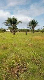 Residential Land Land for sale Aiyedade Osun