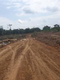 Serviced Residential Land Land for sale Graceville estate Okegun Odofin Village  Lekki/ Epe Expessway Ibeju Lekki Ibeju-Lekki Lagos