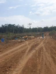 Serviced Residential Land Land for sale Ala Udo Gardens  & Parks   Onitsha Owerri Road Ogbbaku by winners chapels. Owerri Imo