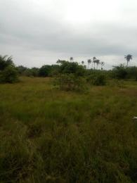 Residential Land Land for sale Ashron View Estate Phase 3  Ibeju-Lekki Lagos