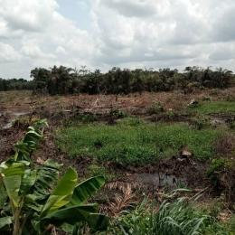 Mixed   Use Land Land for sale Ocean Wealth Okpara road Okigwe 5min drive from Okpara roundabout Okigwe Imo