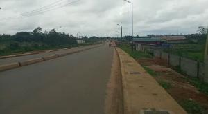 Serviced Residential Land Land for sale Private Property Ologolo By Domino Pizza Off Lekki Epe Expressway  Ologolo Lekki Lagos
