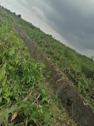 Mixed   Use Land Land for sale Triumph garden orimedu town ibeju lekki Eleko Ibeju-Lekki Lagos