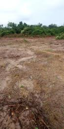 Mixed   Use Land Land for sale Excel Gardens Ado OTA Community  Ado Odo/Ota Ogun