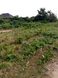 Mixed   Use Land Land for sale Lakeview Located In Sangotedo Near Emperor Estate Off Lekki-Epe Expressway Ajah Lagos