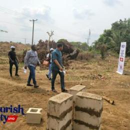 Residential Land Land for sale Flourish City Estate Ikot Eduek Ikot Udofia Itak in Ikono LGA Ikono Akwa Ibom