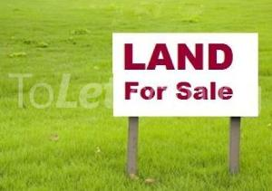 Land for sale Opposite Amen Estate Eleko Ibeju-Lekki Lagos