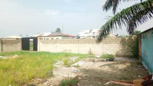 Land for sale elegushi street off AjifoLuke commissioner road oba yekini adeniyi elegushi unity estate iroko awe lekki Ikate Lekki Lagos