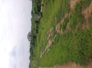 Mixed   Use Land Land for sale Just behind Adokiye Amiesimaka Stadium Greater Port Harcourt Apporoved  New Layout Port Harcourt Rivers