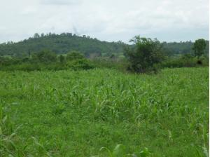 Land for sale PLOT 113, NEAR PRIMESOIL YARD, OFF ABUJA-LOKOJA ROAD, KWALI, ABUJA. Lokoja Kogi
