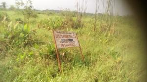 Residential Land Land for sale Banku Phase 2 Wawa-Arepo Arepo Arepo Ogun