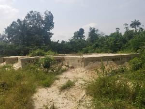 Residential Land Land for sale 19 Ijedo street Otokuto, delta state  Ughelli South Delta