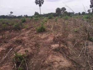 Land for sale Nibo Akwa - Ring Rd, Aguoka, Anambra State Nigeria Akwanga Anambra