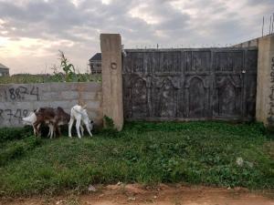 Land for sale Shagari quarters  Dei-Dei Sub-Urban District Abuja