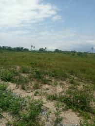 Commercial Land Land for sale Ashron view estate phase 1 Alatise Ibeju-Lekki Lagos