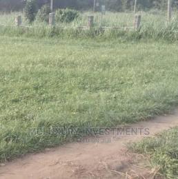 Residential Land Land for sale Fakoya Ketu Kosofe/Ikosi Lagos