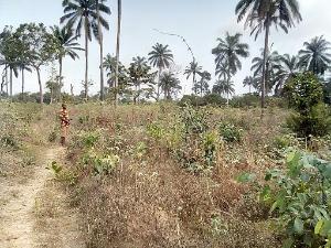 Mixed   Use Land Land for sale Okpuno Awka North Anambra