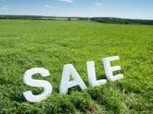 Land for sale behind Golden Park Estate Majek Sangotedo Lagos