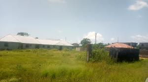 Residential Land for sale Alaro City Free Trade Zone Ibeju-Lekki Lagos