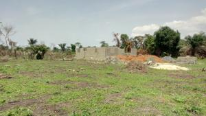 Mixed   Use Land Land for sale Mawere Akorede Agric Ikorodu Lagos