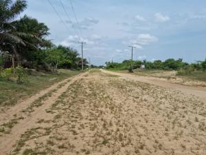 Residential Land Land for sale AJayi Apata Crown Estate Ajah Lagos