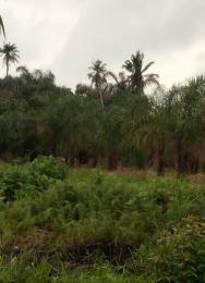Mixed   Use Land Land for sale Along Free Trade Zone Orimedu Ibeju-Lekki Lagos