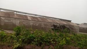 Residential Land Land for sale Farm city Epe Epe Lagos