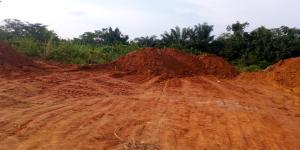 Residential Land Land for sale Pankishan, Isawo, Agric, Ikorodu Agric Ikorodu Lagos