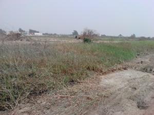 Residential Land Land for sale Seagate Estate, Ikate Lekki Ikate Lekki Lagos