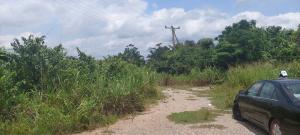 Residential Land Land for sale The Colony, Ofada,Ogun State  Ofada Obafemi Owode Ogun