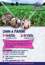 Land for sale Aiyedire Osun