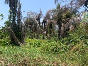 Land for sale Lekki Scheme 2 Ajah Lagos