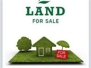 Land for sale Chevron Drive,opposite Carlton Gate Estate Lekki Lagos