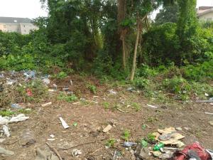 Commercial Land Land for sale directly facing Lekki/Epe expressway, by Lekki Conservation, 2nd toll gate opposite Chevron, chevron Lekki Lagos