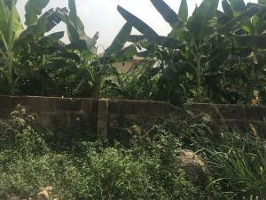 Land for sale Adenike Ogunye street magodo gra phase 2 near shangisha Magodo GRA Phase 2 Kosofe/Ikosi Lagos