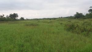 Land for sale Eputu Ibeju-Lekki Lagos