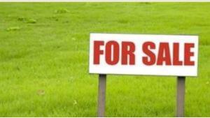 Land for sale Animashaun estate Ipakodo Ikorodu Lagos