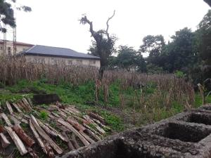 Residential Land Land for sale Gwarinpa  Kubwa Abuja