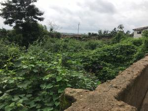 Mixed   Use Land for sale Mojimorire Street, Yasalam Area, Ede South Osun