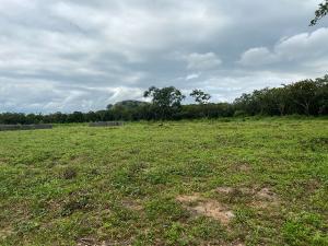 Residential Land Land for sale idu new layout Idu Abuja
