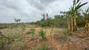 Residential Land Land for sale Near The New Omi Adio Train Station Oyo Oyo