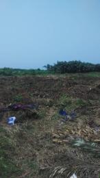 Residential Land Land for sale 131 estate ibeju lekki Eleko Ibeju-Lekki Lagos