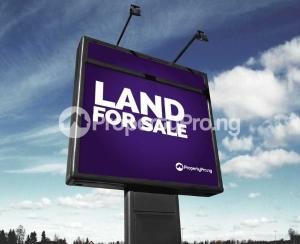 Land for sale Ajayi Apata Beside Crown Estate Sangotedo Lagos