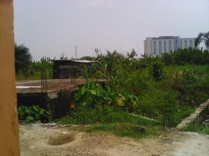 Land for sale Shagamu-Benin Expressway Odogbolu Ogun