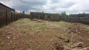 4 bedroom Mixed   Use Land Land for sale Ijuri bustop Lusada Agbara Agbara-Igbesa Ogun
