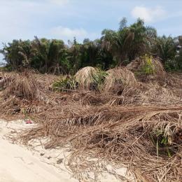 Mixed   Use Land Land for sale Netos Villa Estate Behind Beachwood Park Estate  Eluju Ibeju-Lekki Lagos